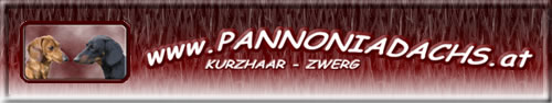 www.pannoniadachs.at
